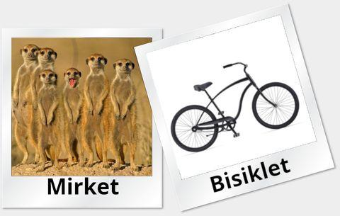 Mirket ve Bisiklet
